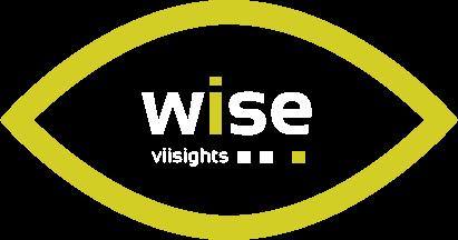 viisights wise product logo