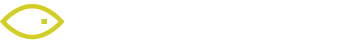 viisights logo