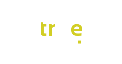 viisights true product logo