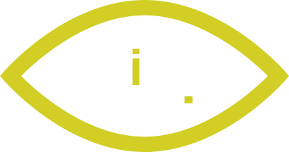 viisights wise product logo