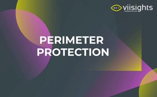 http://Viisights-Perimeter-Protection